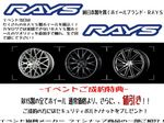 RAYS.blog_R.jpg
